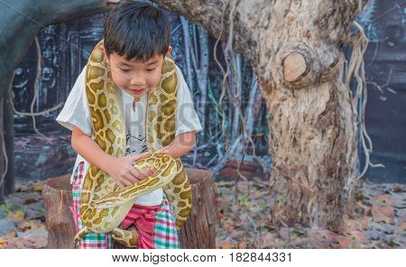 Asian Boy Hold Boa Constrictor Snake .