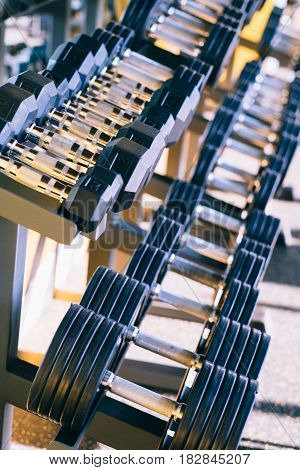 Dumbbelle weights equipment in a row at the gym