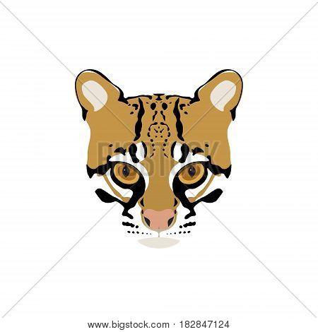 Vector portrait of ocelot. Wild cat illustration.