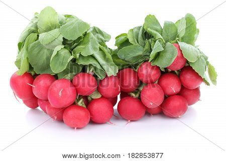 Red Radish Radishes Vegetable Isolated