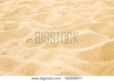 Many Holes After Footprints In The Beach Sand Background ..