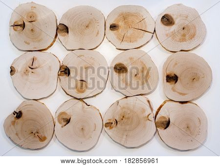 Decorative interior unpolished alder wooden saw cuts with knots on white background.