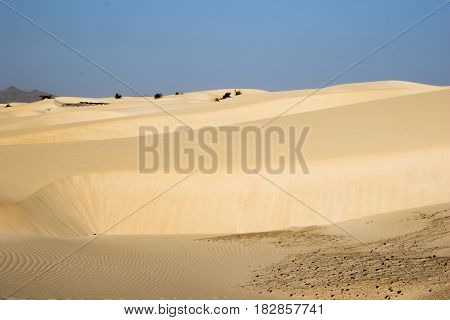 Sandy desert on the island of Boa Vista, Cape Verdi