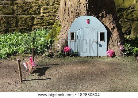 A Fairy Door in a Tree and a Miniature Washing Line.