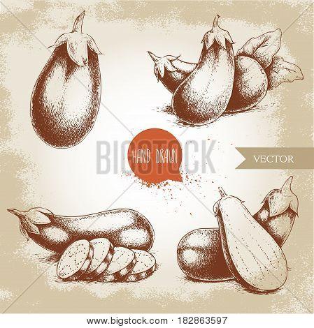Hand drawn sketch style fresh eggplants. Fresh eggplant and sliced eggplant.Vintage illustration of healthy fresh organic food.