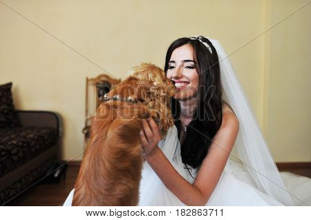 Beautiful Smiling Brunette Bride At Wedding Dress At Room With Funny Cocker Spaniel Dog.
