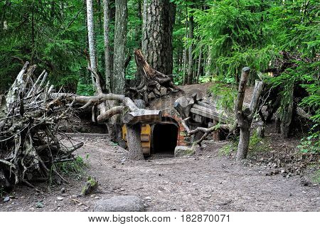 Dwarfs fairy houses in the mysterious woods.