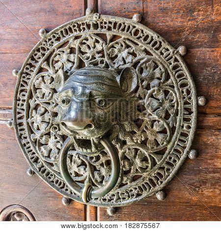 Vintage old door with lion door knocker Hamburg Cathedral, Germany