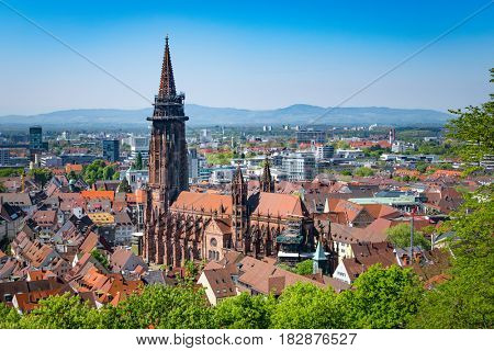 An image of the cathedral in Freiburg Germany