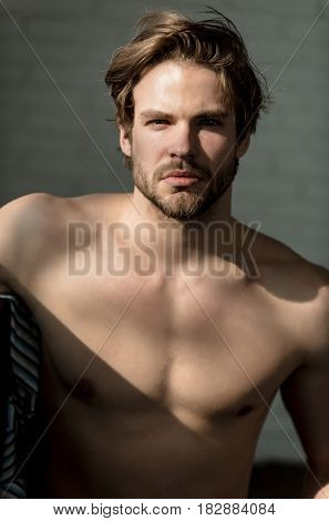 sexy fashion model fit muscular guy with beard or sexy macho athlete with sunlight on naked torso on grey background. Blond hair and bearded unshaven face skin. Male beauty and fitness
