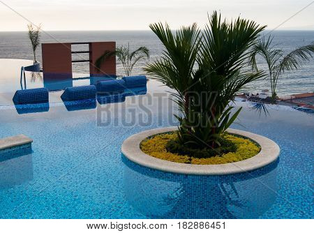 A nice planter in a swimming pool on top of a tall building with the ocean in the background