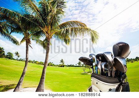 Golf bag with different types of clubs against beautiful scenery of course