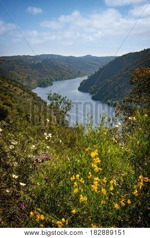 Landscape of Belver village and the Tagus river in Portugal