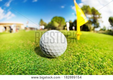 Close-up picture of white golf ball on the fairway of course