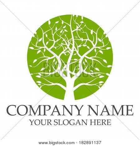 Green tree logo design template eps 10