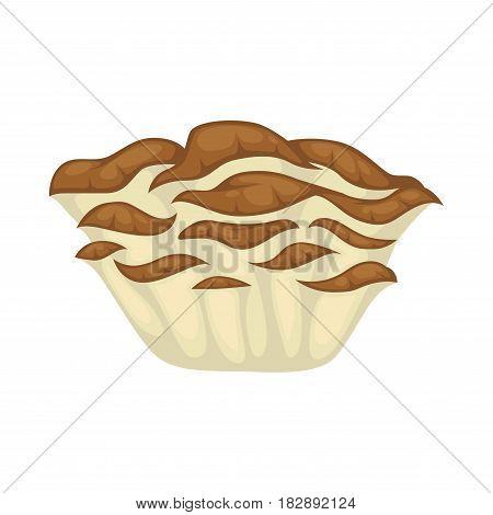 Maitake boletus close-up graphic icon on white background vector illustration. Consist of numerous flat, semicircular or shovel-shaped hats sitting on re-branching legs that merge into common base.