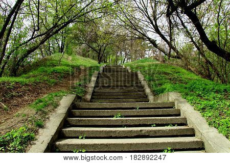 Steps up and down. Original landscape steps. They are located in the Park of culture and rest. Nice to climb and descend supercam among the trees and shrubs with young greens.
