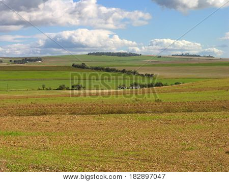 LANDSCAPE, OPEN FIELDS IN THE FORE GROUND AND A HILL AND CLOUDS IN THE BACK GROUND