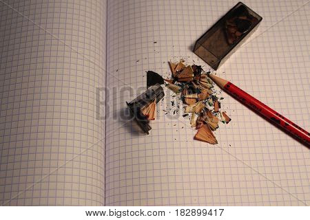 Pencil shavings on a tetrad sheet and a sharpener