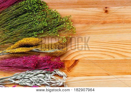 Background of a beautiful wild dried flowers close-up. dried decorative flowers and plants on a wooden background. Place for text