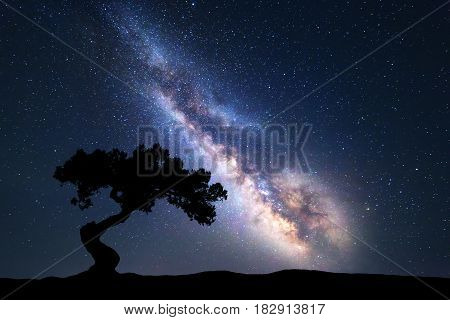 Milky Way With Alone Old Tree On The Hill