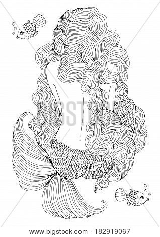 Vector drawing fantastic sea mermaid with long wavy hair sits with his back. Ornamental decorated graphic illustration of a mermaid tattoo. Coloring  page sea nymph. Fairy tale characters.