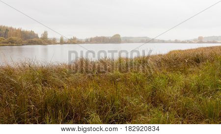 Autumn landscape in Finland at foggy overcast day