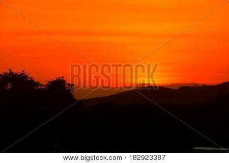 sunset beautiful and silhouette tree colorful landscape in sky twilight time