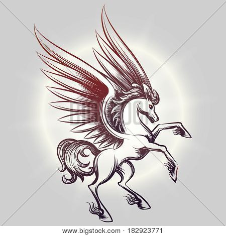 Sketched Pegasus with wings in light round on grey backdrop. Vector illustration