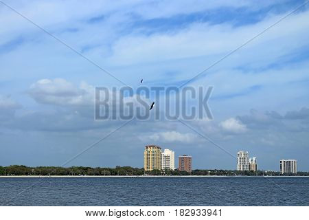 Bayside West neighborhood on the outskirts of Tampa City seen from Ballast Point Park