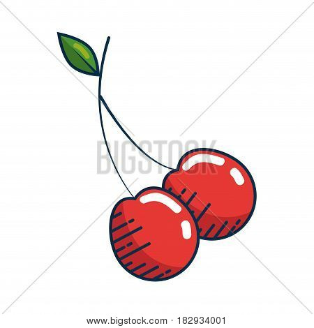 cherry fruit icon over white background. colorful desing. vector illustration