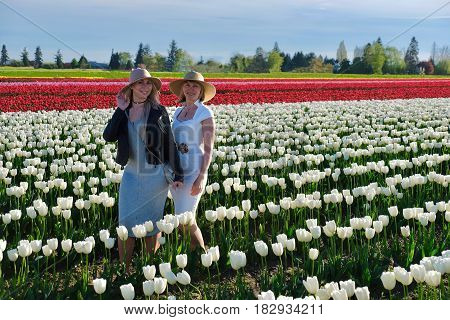 Smiling friends women in colorful tulips field. Skagit Valley Tulip festival. Seattle. Mount Vernon. WA. United States.