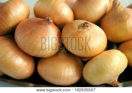 Fresh onions. Onions background. Ripe onions on market