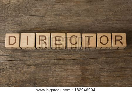 director word written on cubes on wooden background