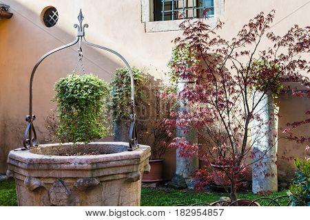Garden In Cloister In Chiesa Di San Lorenzo