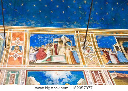 Wall And Ceiling Frescoes In Scrovegni Chapel