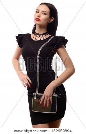 Elegant Woman With A Silver Fashion Bag