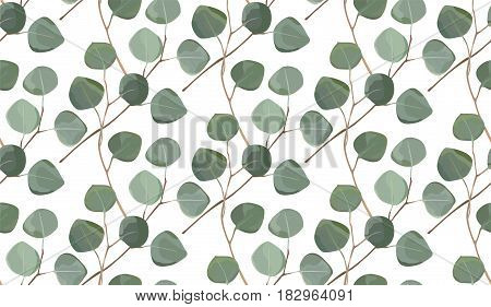 Eucalyptus tree foliage natural branches with leaves tropical seamless pattern in watercolor style. Vector decorative beautiful cute elegant illustration isolated white background