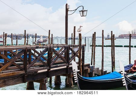 Gulls And Gondolas In Venetian Lagoon