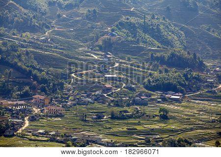 Rice field terraces (rice paddy fields) near Cat Cat village - popular tourist trekking destination near Sapa, Vietnam