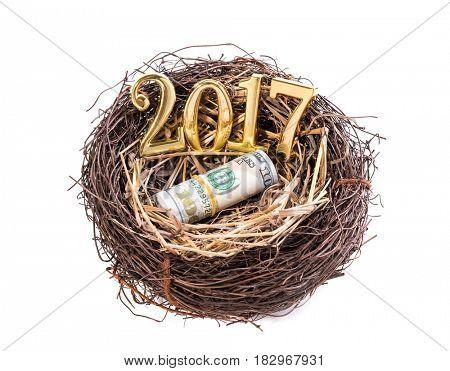 New born 2017 on nest