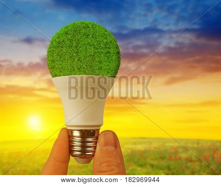 Eco LED bulb in hand at sunset. Energy saving lamp.