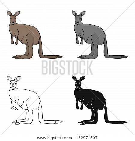 Kangaroo icon in cartoon design isolated on white background. Australia symbol stock vector illustration.