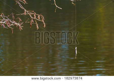 A fishing lure hanging on the fishing line on the background of lake