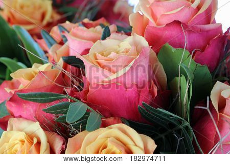 A Bouquet of wonderful cherry brandy Roses closeup