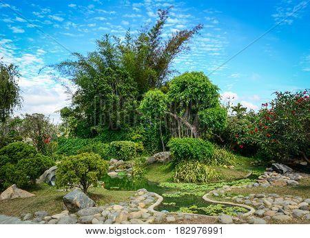 Landscape Of Green Forest At Summer Time