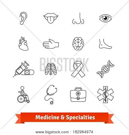 Medicine and medical specialties. Thin line art icons set. Human organs, diagnostic equipment, ambulance. Linear style symbols isolated on white.