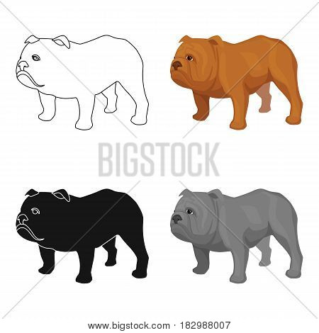 English bulldog icon in cartoon style isolated on white background. England country symbol vector illustration.