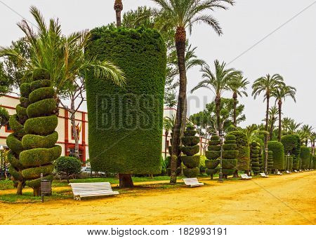 Cadiz, Spain. Genovese green park landsape view
