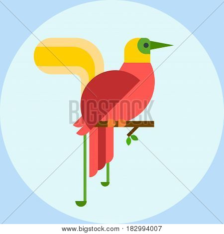 Cartoon tropical peacock wild animal bird vector illustration and wildlife cute feather zoo color nature vivid perch tropics fly fauna jungle pretty tail. Wing bright plumage flying colourful male.